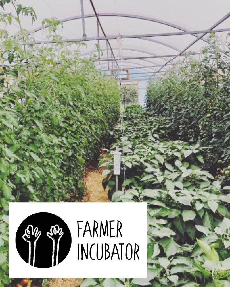 Farmer Incubator